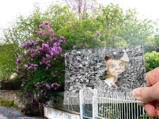 Le lilas de Zoé
